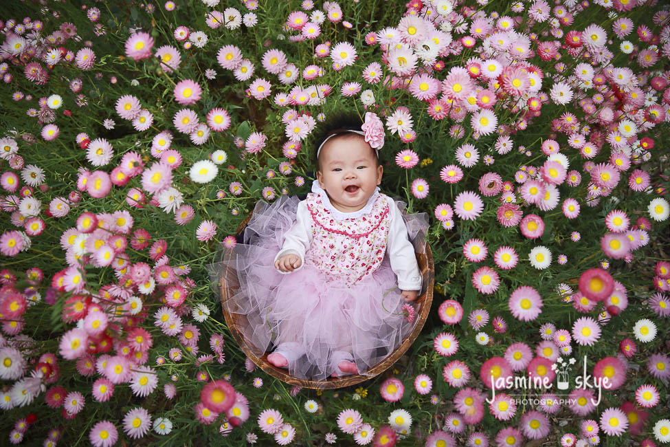 baby portraits with flowers
