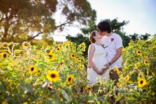 sunflower maternity photography perth