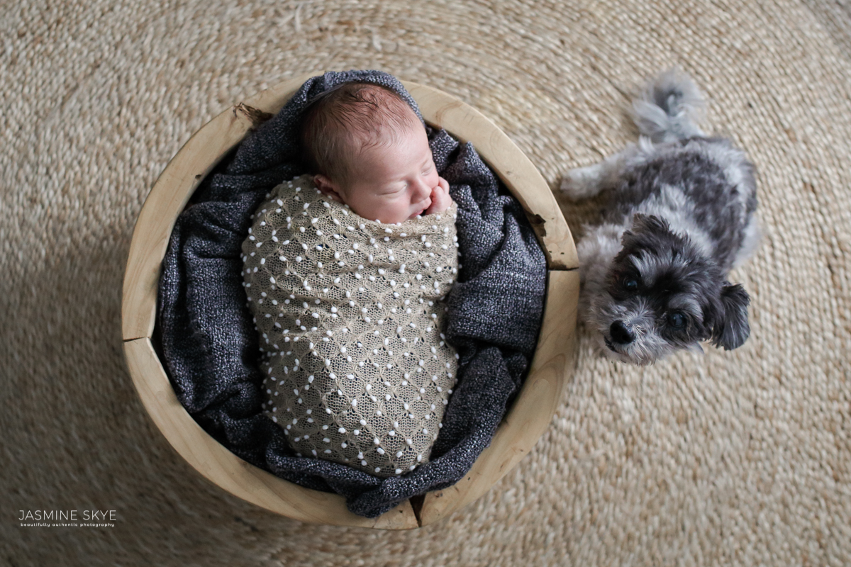 baby and dog photos