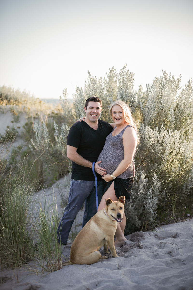 pregnancy photography with dogs